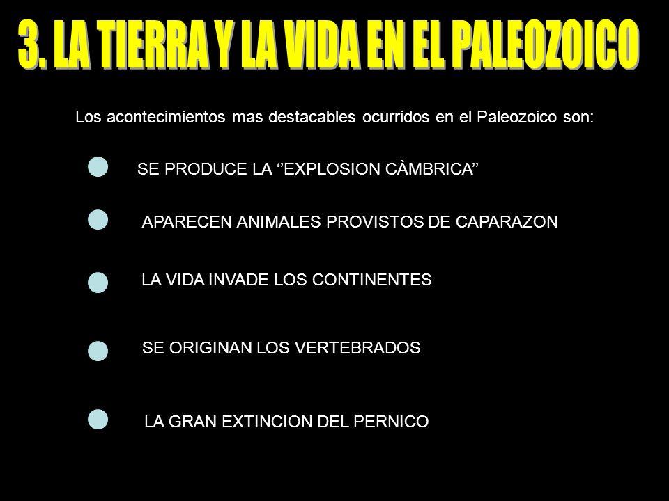 Los acontecimientos mas destacables ocurridos en el Paleozoico son: SE PRODUCE LA EXPLOSION CÀMBRICA APARECEN ANIMALES PROVISTOS DE CAPARAZON LA VIDA