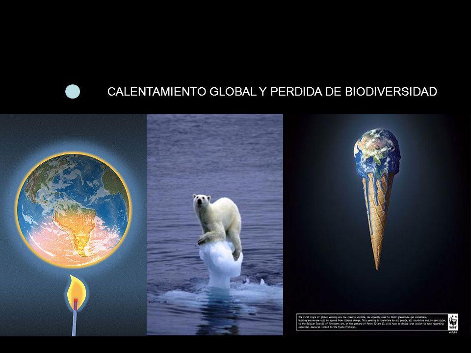 CALENTAMIENTO GLOBAL Y PERDIDA DE BIODIVERSIDAD