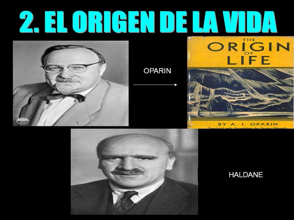 OPARIN HALDANE