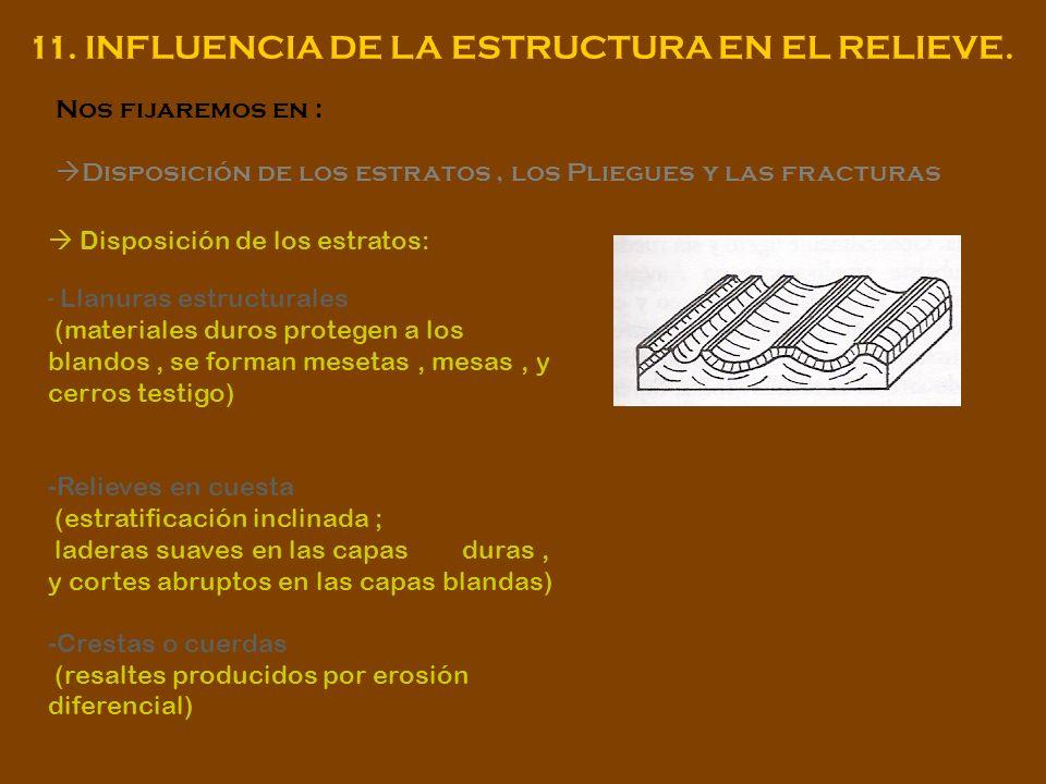 11. INFLUENCIA DE LA ESTRUCTURA EN EL RELIEVE. Nos fijaremos en : Disposición de los estratos, los Pliegues y las fracturas Disposición de los estrato