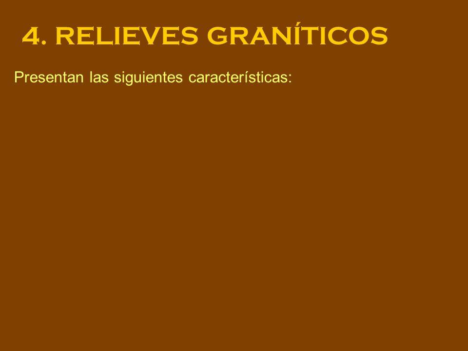 Presentan las siguientes características: