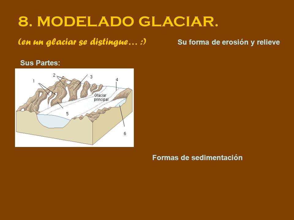 8. MODELADO GLACIAR. (en un glaciar se distingue… :) Sus Partes: Su forma de erosión y relieve Formas de sedimentación