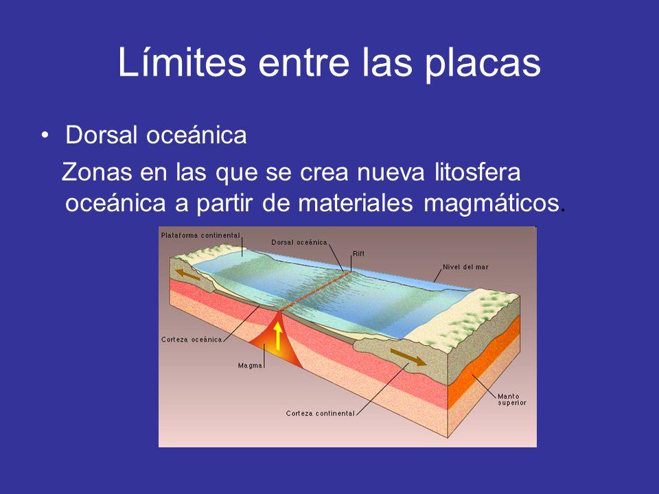Zonas de subducción: Límites en los que se destruye litosfera al hundirse una placa compensando la generada en las dorsales.