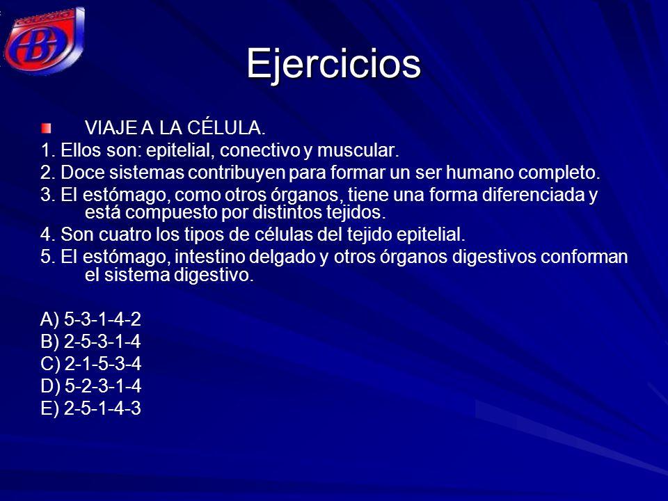Ejercicios VIAJE A LA CÉLULA. 1. Ellos son: epitelial, conectivo y muscular. 2. Doce sistemas contribuyen para formar un ser humano completo. 3. El es