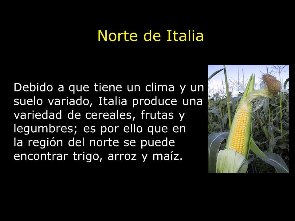 Debido a que tiene un clima y un suelo variado, Italia produce una variedad de cereales, frutas y legumbres; es por ello que en la región del norte se