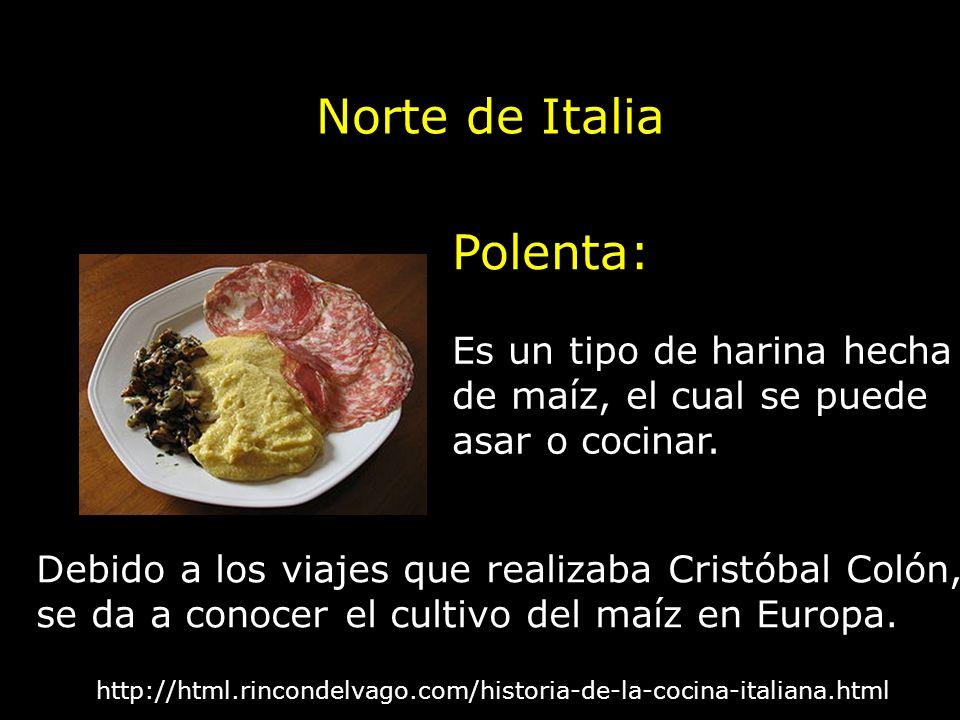 Polenta: http://html.rincondelvago.com/historia-de-la-cocina-italiana.html Es un tipo de harina hecha de maíz, el cual se puede asar o cocinar. Debido