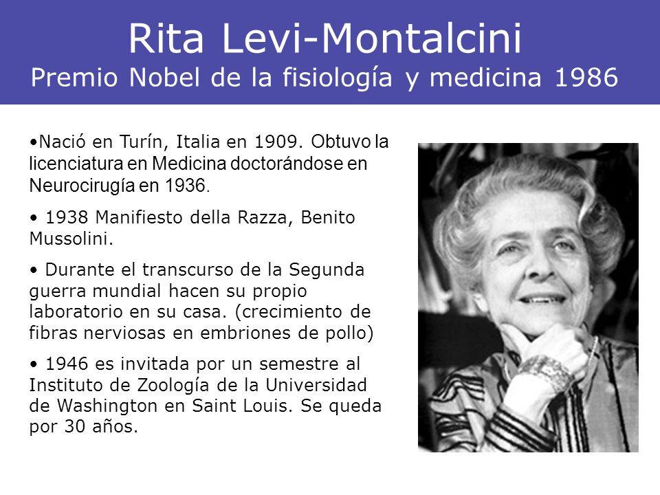 Rita Levi-Montalcini Premio Nobel de la fisiología y medicina 1986 Nació en Turín, Italia en 1909. Obtuvo la licenciatura en Medicina doctorándose en