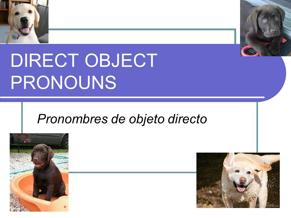 DIRECT OBJECT PRONOUNS Pronombres de objeto directo