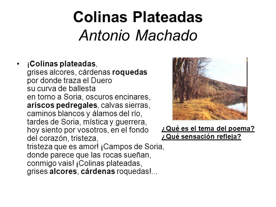 Colinas Plateadas Antonio Machado ¡Colinas plateadas, grises alcores, cárdenas roquedas por donde traza el Duero su curva de ballesta en torno a Soria