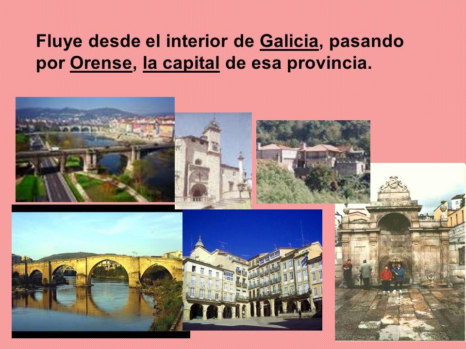 Fluye desde el interior de Galicia, pasando por Orense, la capital de esa provincia.