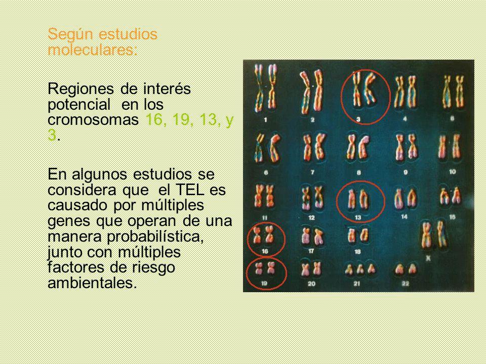 Según estudios moleculares: Regiones de interés potencial en los cromosomas 16, 19, 13, y 3. En algunos estudios se considera que el TEL es causado po