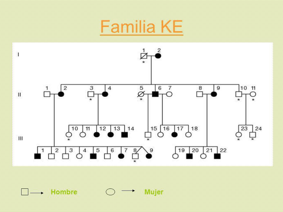 Familia KE HombreMujer