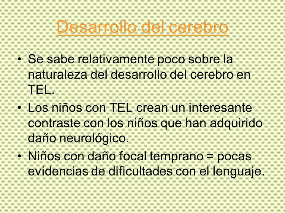 Desarrollo del cerebro Se sabe relativamente poco sobre la naturaleza del desarrollo del cerebro en TEL. Los niños con TEL crean un interesante contra