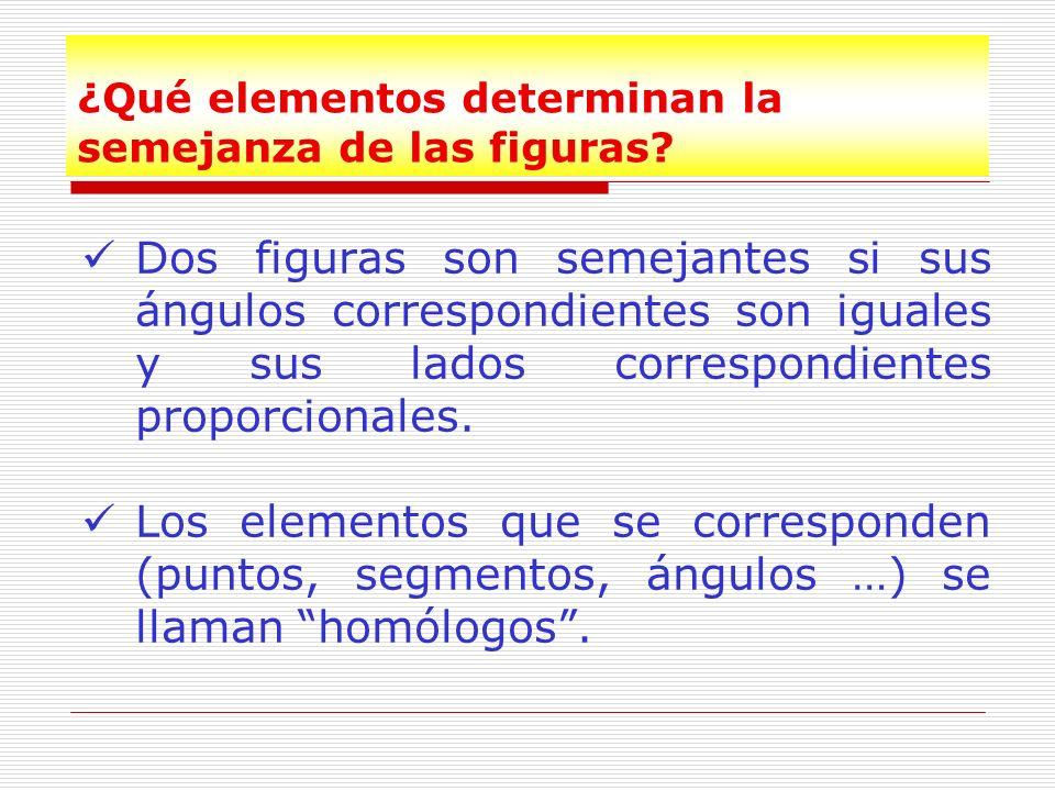 ¿Qué elementos determinan la semejanza de las figuras?