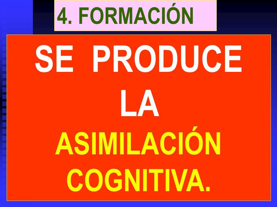 3. ELABORACIÓN El cerebro procesa los estímulos eléctricos y establece las conexiones neuronales.