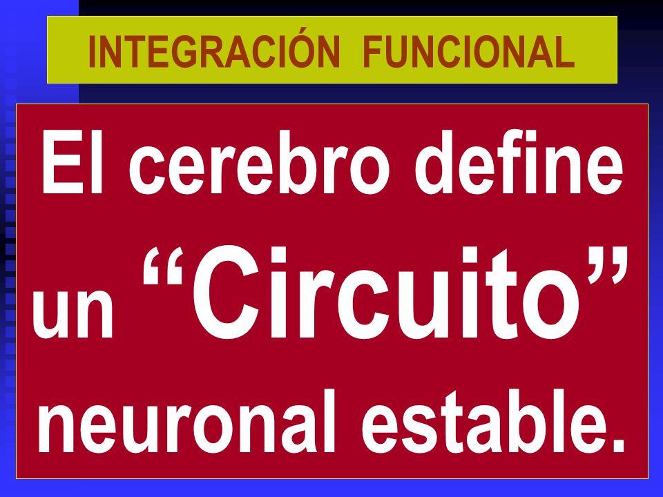 4. FORMACIÓN SE PRODUCE LA ASIMILACIÓN COGNITIVA.