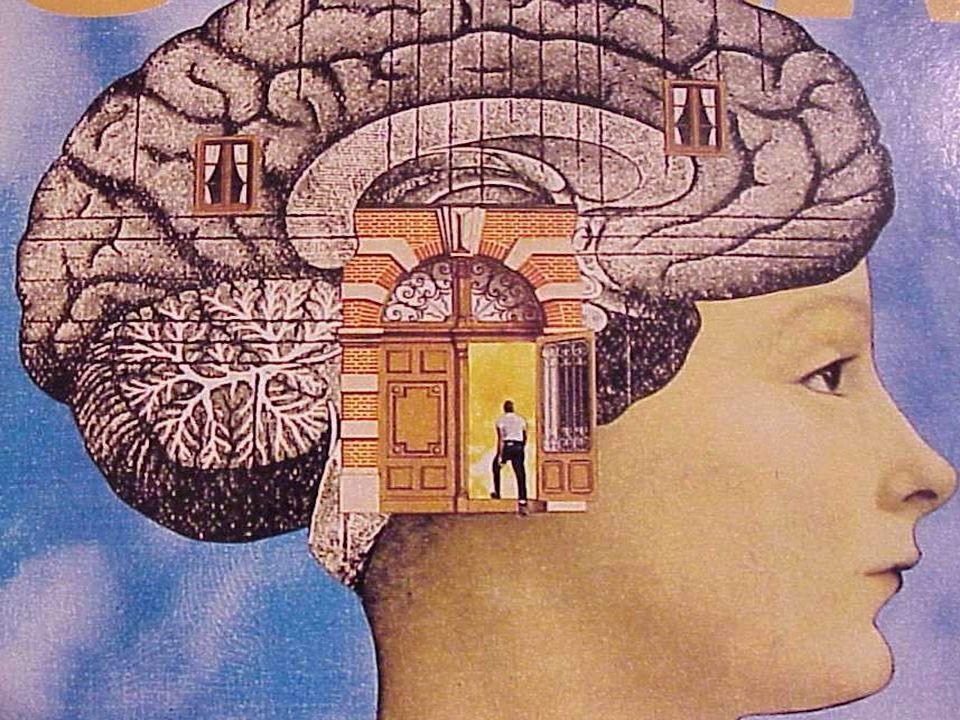 El componente deseo y volición La emoción y los sentimientos de amor son los mejores energizántes de la voluntad y el deseo.