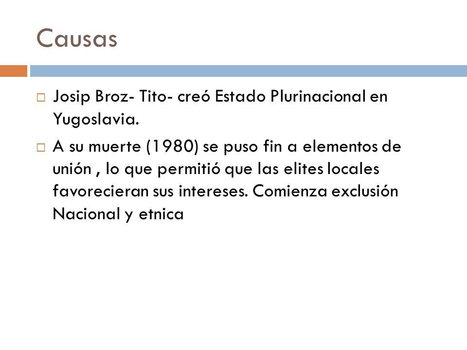 Causas Josip Broz- Tito- creó Estado Plurinacional en Yugoslavia. A su muerte (1980) se puso fin a elementos de unión, lo que permitió que las elites