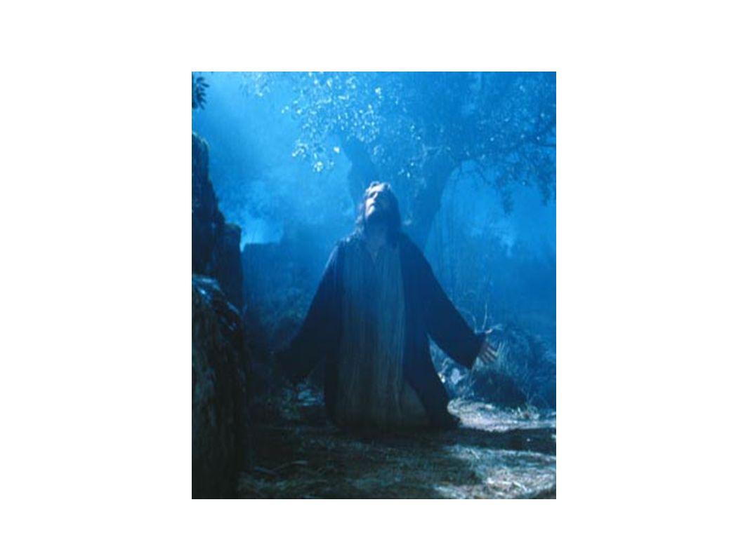 QUINTA ESTACIÓN: JESÚS ES JUZGADO POR PILATOS DE DONDE CAIFÁS SE LLEVARON A JESÚS AL PRETORIO.
