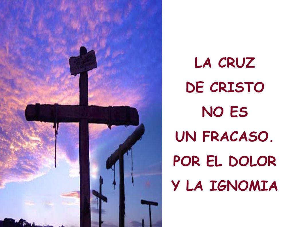 LA CRUZ DE CRISTO NO ES UN FRACASO. POR EL DOLOR Y LA IGNOMIA