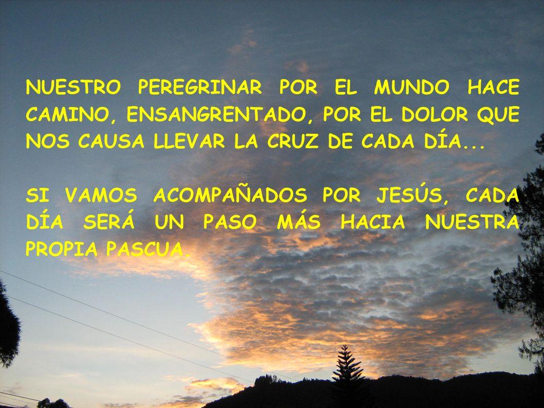 NUESTRO PEREGRINAR POR EL MUNDO HACE CAMINO, ENSANGRENTADO, POR EL DOLOR QUE NOS CAUSA LLEVAR LA CRUZ DE CADA DÍA... SI VAMOS ACOMPAÑADOS POR JESÚS, C