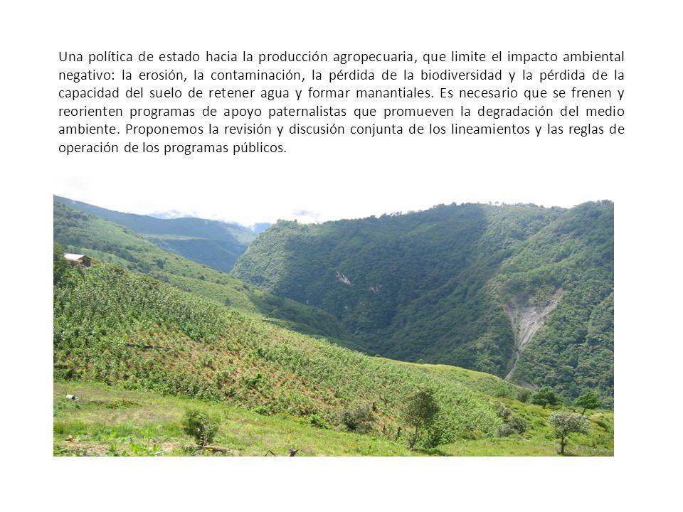 Una política de estado hacia la producción agropecuaria, que limite el impacto ambiental negativo: la erosión, la contaminación, la pérdida de la biodiversidad y la pérdida de la capacidad del suelo de retener agua y formar manantiales.