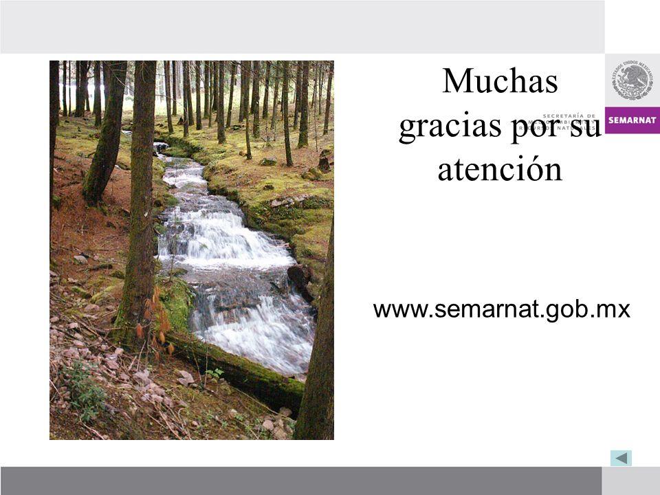 Muchas gracias por su atención www.semarnat.gob.mx
