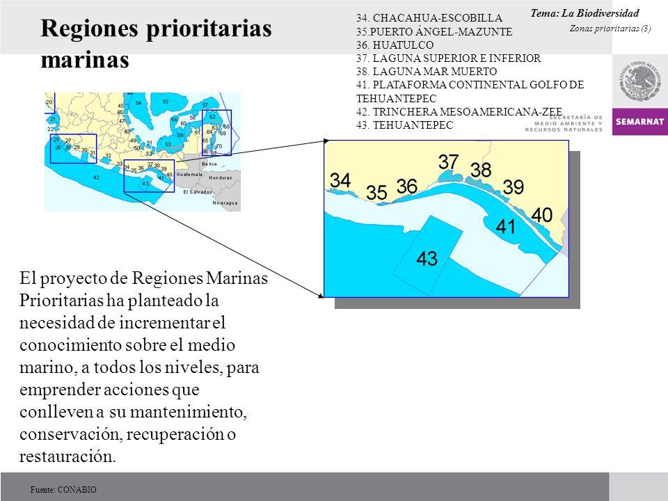 Regiones prioritarias marinas 34. CHACAHUA-ESCOBILLA 35.PUERTO ÁNGEL-MAZUNTE 36. HUATULCO 37. LAGUNA SUPERIOR E INFERIOR 38. LAGUNA MAR MUERTO 41. PLA