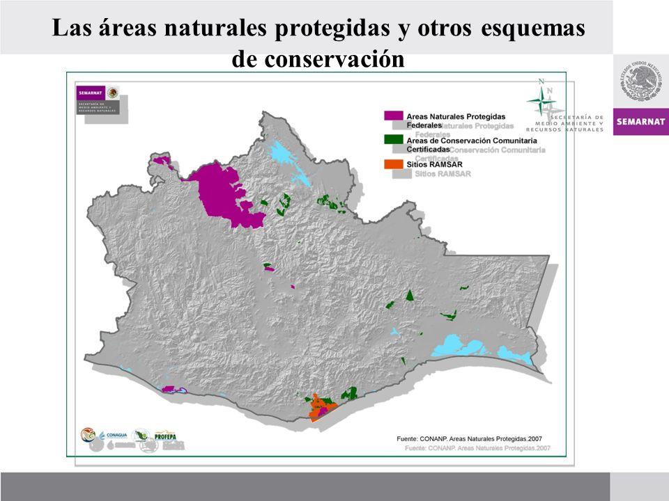 Las áreas naturales protegidas y otros esquemas de conservación