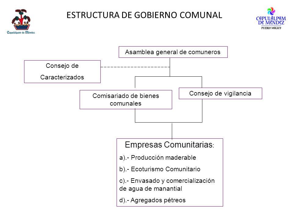 ESTRUCTURA DE GOBIERNO COMUNAL Asamblea general de comuneros Comisariado de bienes comunales Consejo de vigilancia Consejo de Caracterizados Empresas