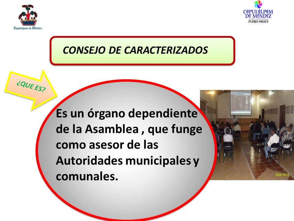 CONSEJO DE CARACTERIZADOS ¿QUE ES? Es un órgano dependiente de la Asamblea, que funge como asesor de las Autoridades municipales y comunales.