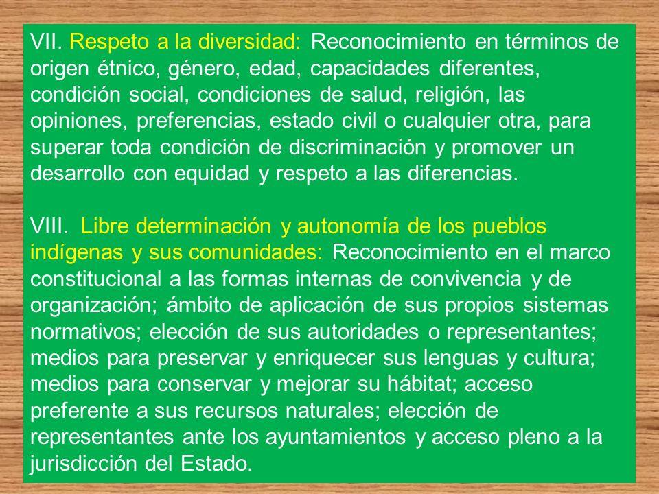 VII. Respeto a la diversidad: Reconocimiento en términos de origen étnico, género, edad, capacidades diferentes, condición social, condiciones de salu