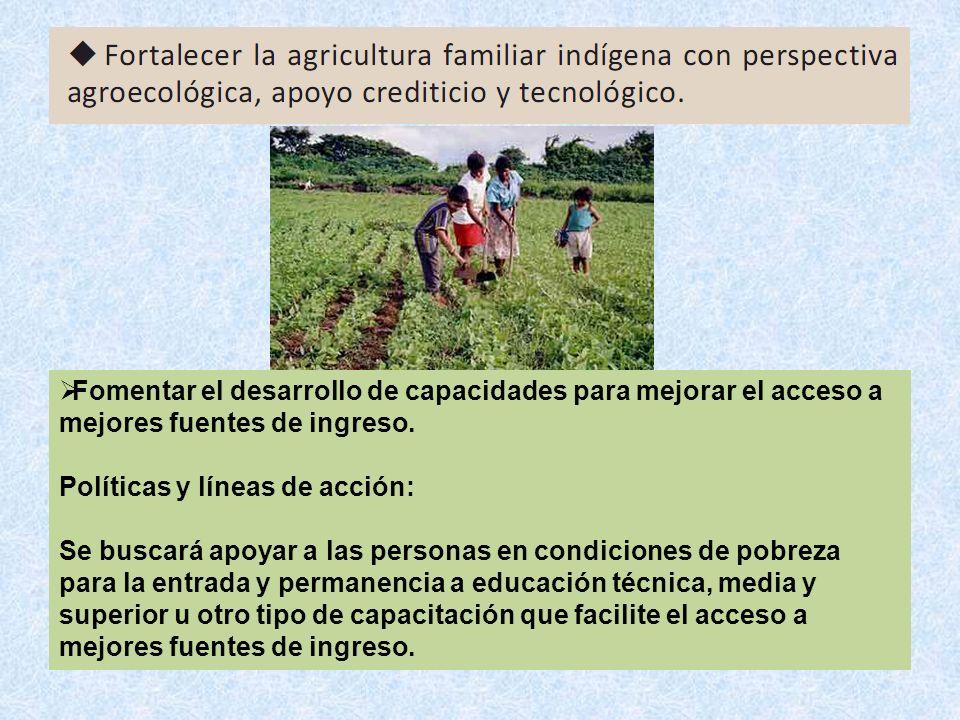 Fomentar el desarrollo de capacidades para mejorar el acceso a mejores fuentes de ingreso. Políticas y líneas de acción: Se buscará apoyar a las perso