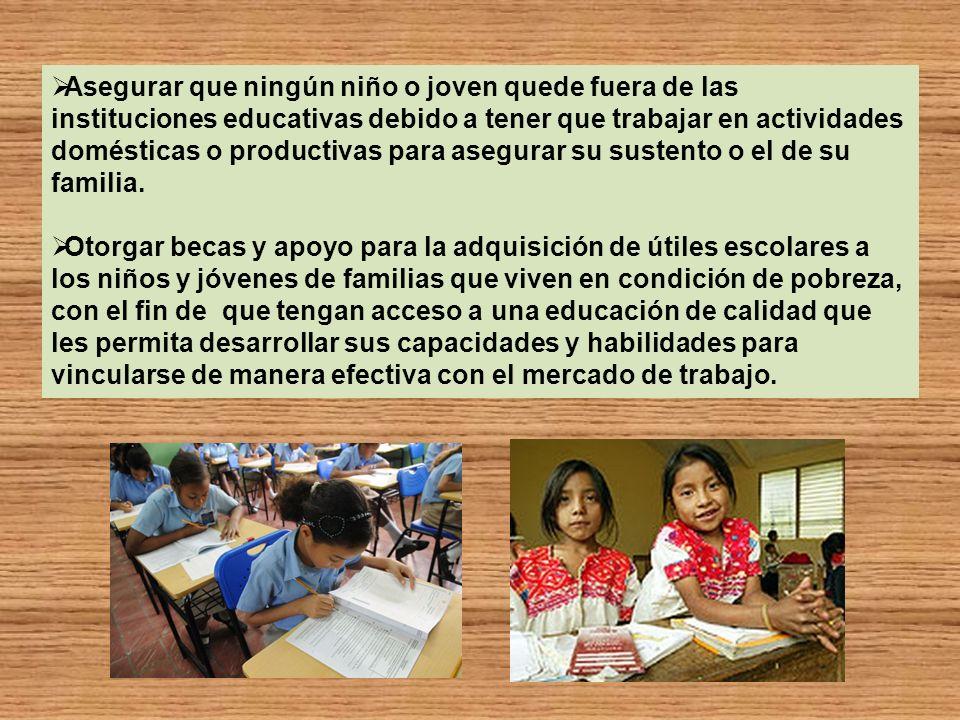 Asegurar que ningún niño o joven quede fuera de las instituciones educativas debido a tener que trabajar en actividades domésticas o productivas para