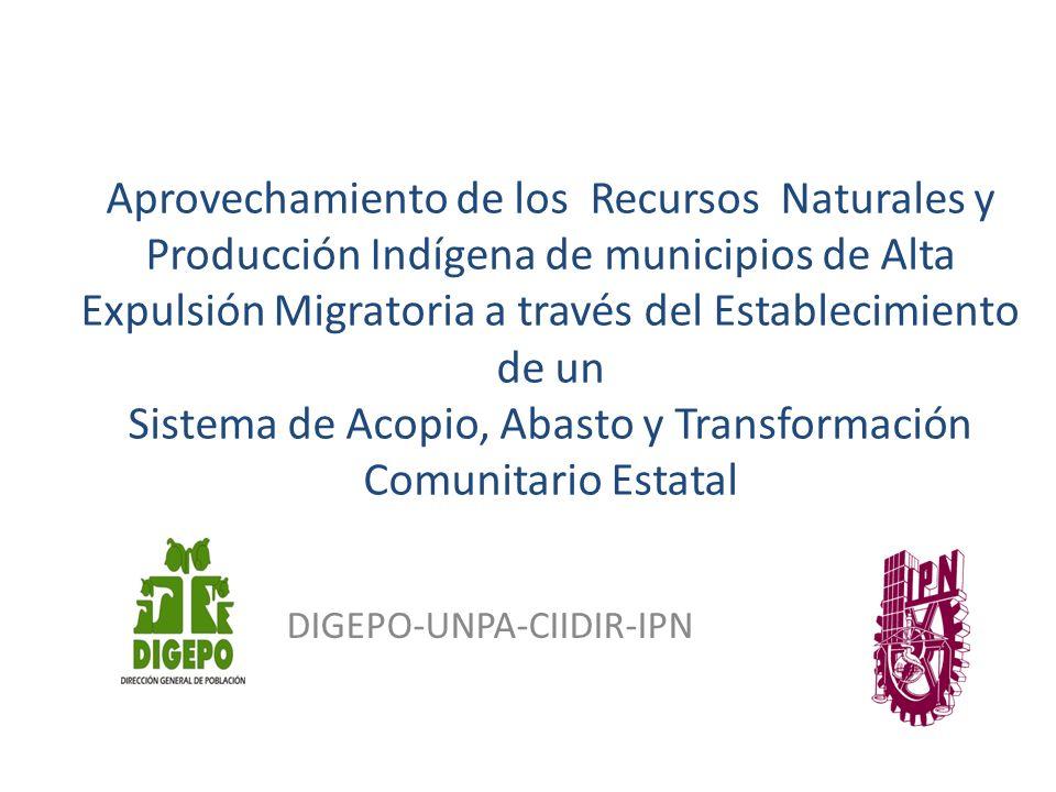 Aprovechamiento de los Recursos Naturales y Producción Indígena de municipios de Alta Expulsión Migratoria a través del Establecimiento de un Sistema