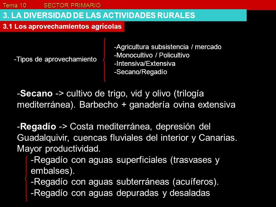 Tema 10 SECTOR PRIMARIO 3. LA DIVERSIDAD DE LAS ACTIVIDADES RURALES 3.1 Los aprovechamientos agrícolas -Tipos de aprovechamiento -Agricultura subsiste