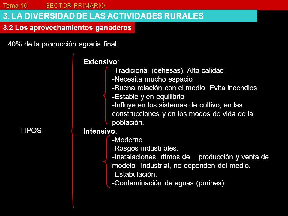 Tema 10 SECTOR PRIMARIO 3. LA DIVERSIDAD DE LAS ACTIVIDADES RURALES 3.2 Los aprovechamientos ganaderos 40% de la producción agraria final. Extensivo: