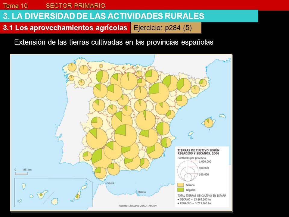 Tema 10 SECTOR PRIMARIO 3. LA DIVERSIDAD DE LAS ACTIVIDADES RURALES 3.1 Los aprovechamientos agrícolas Extensión de las tierras cultivadas en las prov