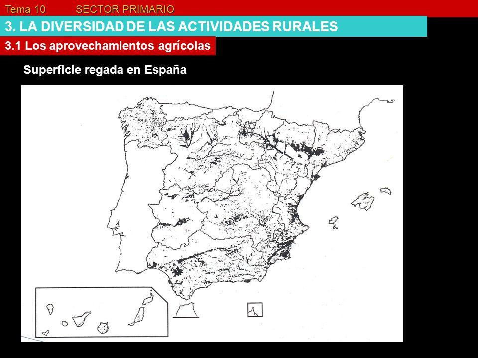 Tema 10 SECTOR PRIMARIO 3. LA DIVERSIDAD DE LAS ACTIVIDADES RURALES 3.1 Los aprovechamientos agrícolas Superficie regada en España