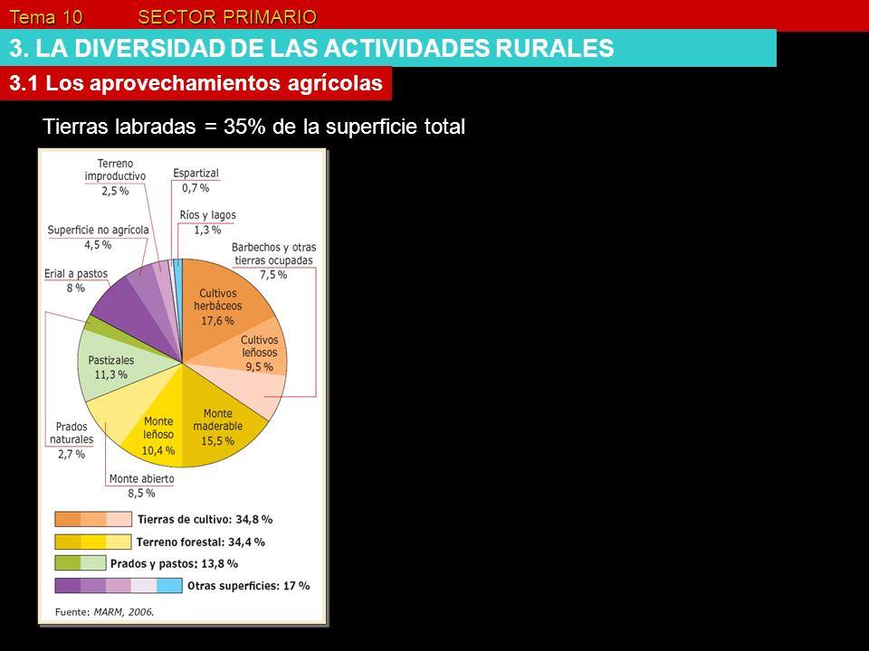 Tema 10 SECTOR PRIMARIO 3. LA DIVERSIDAD DE LAS ACTIVIDADES RURALES 3.1 Los aprovechamientos agrícolas Tierras labradas = 35% de la superficie total