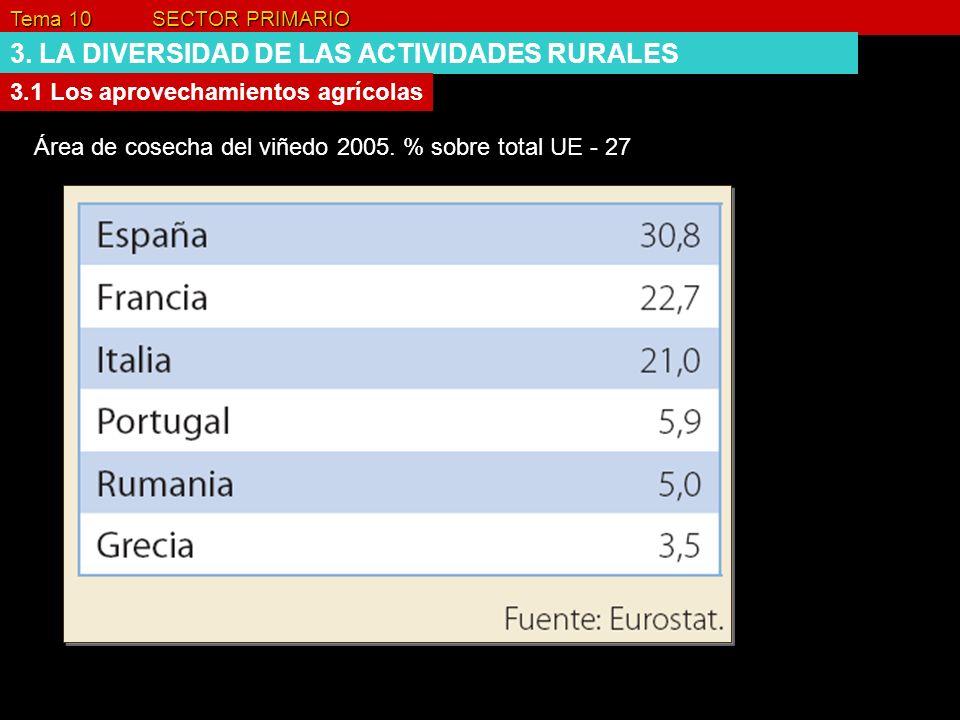 Tema 10 SECTOR PRIMARIO 3. LA DIVERSIDAD DE LAS ACTIVIDADES RURALES 3.1 Los aprovechamientos agrícolas Área de cosecha del viñedo 2005. % sobre total