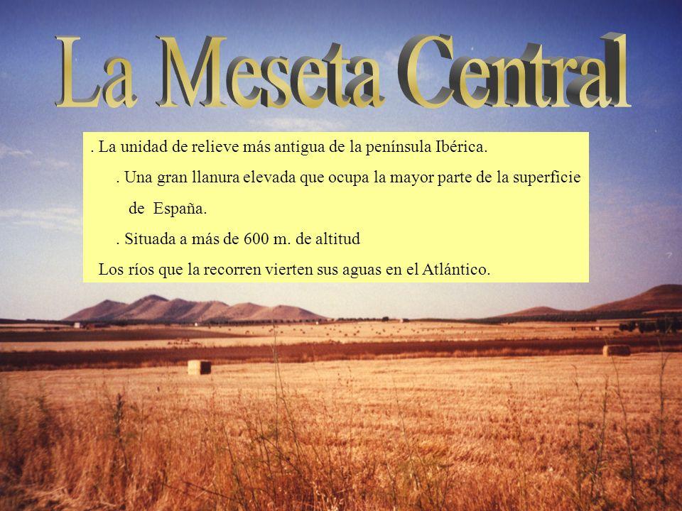 . La unidad de relieve más antigua de la península Ibérica.. Una gran llanura elevada que ocupa la mayor parte de la superficie de España.. Situada a