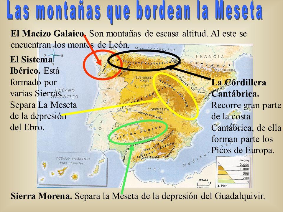 El Macizo Galaico. Son montañas de escasa altitud. Al este se encuentran los montes de León. El Sistema Ibérico. Está formado por varias Sierras. Sepa