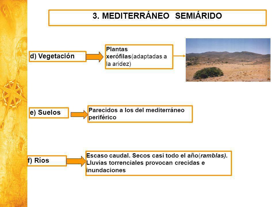 Historia y Ciencias Sociales Geografía 3. MEDITERRÁNEO SEMIÁRIDO d) Vegetación Plantas xerófilas(adaptadas a la aridez) e) Suelos Parecidos a los del