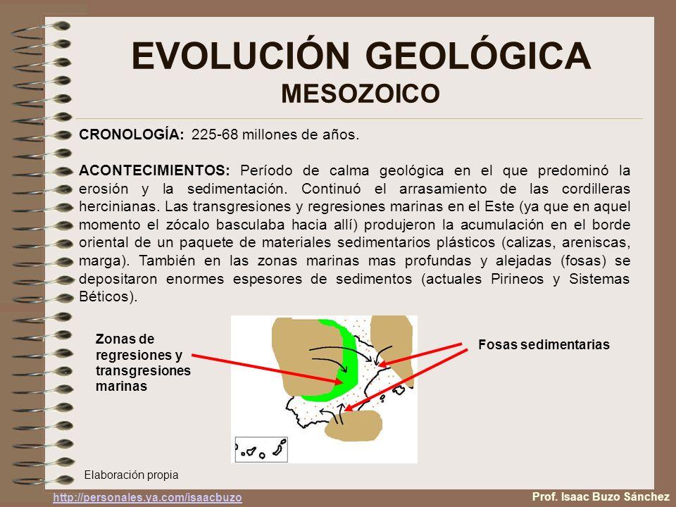EVOLUCIÓN GEOLÓGICA MESOZOICO Prof. Isaac Buzo Sánchez CRONOLOGÍA: 225-68 millones de años. ACONTECIMIENTOS: Período de calma geológica en el que pred