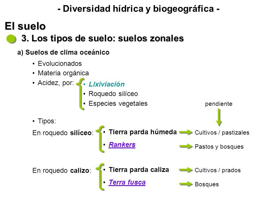 En roquedo calizo (disolución > horizonte argílico): - Diversidad hídrica y biogeográfica - El suelo 3.