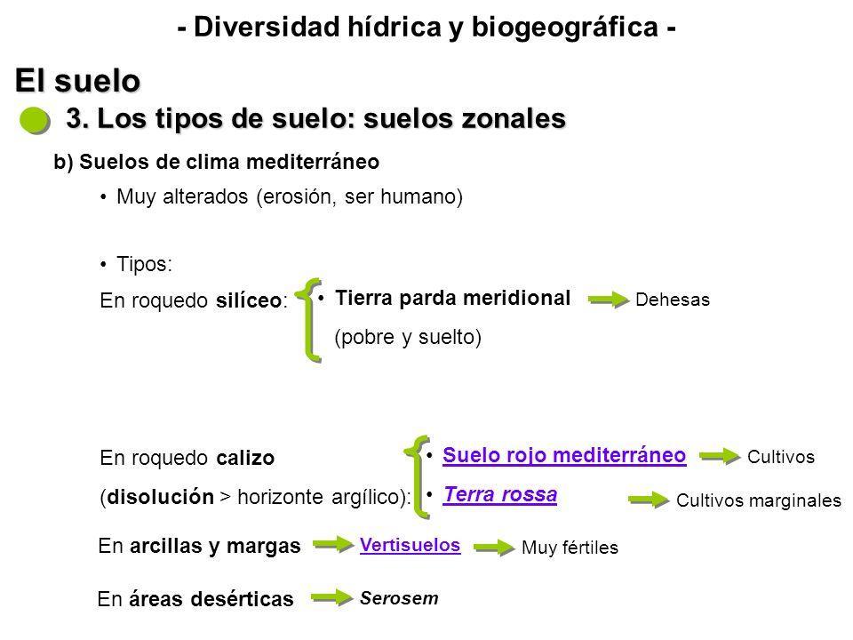- Diversidad hídrica y biogeográfica - El suelo 3.