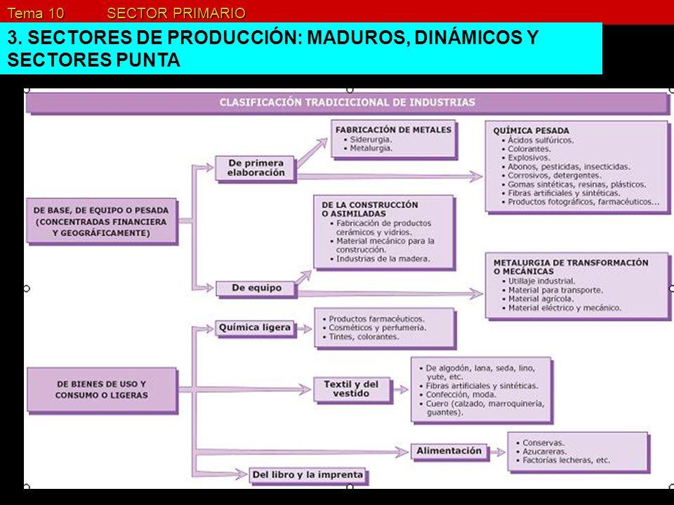 Tema 10 SECTOR PRIMARIO 3. SECTORES DE PRODUCCIÓN: MADUROS, DINÁMICOS Y SECTORES PUNTA