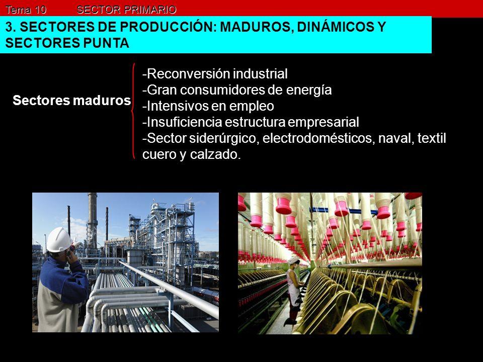 Tema 10 SECTOR PRIMARIO 3. SECTORES DE PRODUCCIÓN: MADUROS, DINÁMICOS Y SECTORES PUNTA Sectores maduros -Reconversión industrial -Gran consumidores de