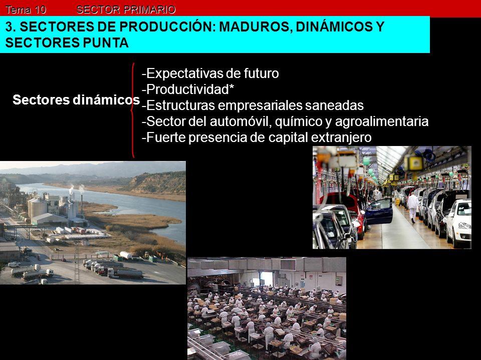 Tema 10 SECTOR PRIMARIO 3. SECTORES DE PRODUCCIÓN: MADUROS, DINÁMICOS Y SECTORES PUNTA Sectores dinámicos -Expectativas de futuro -Productividad* -Est